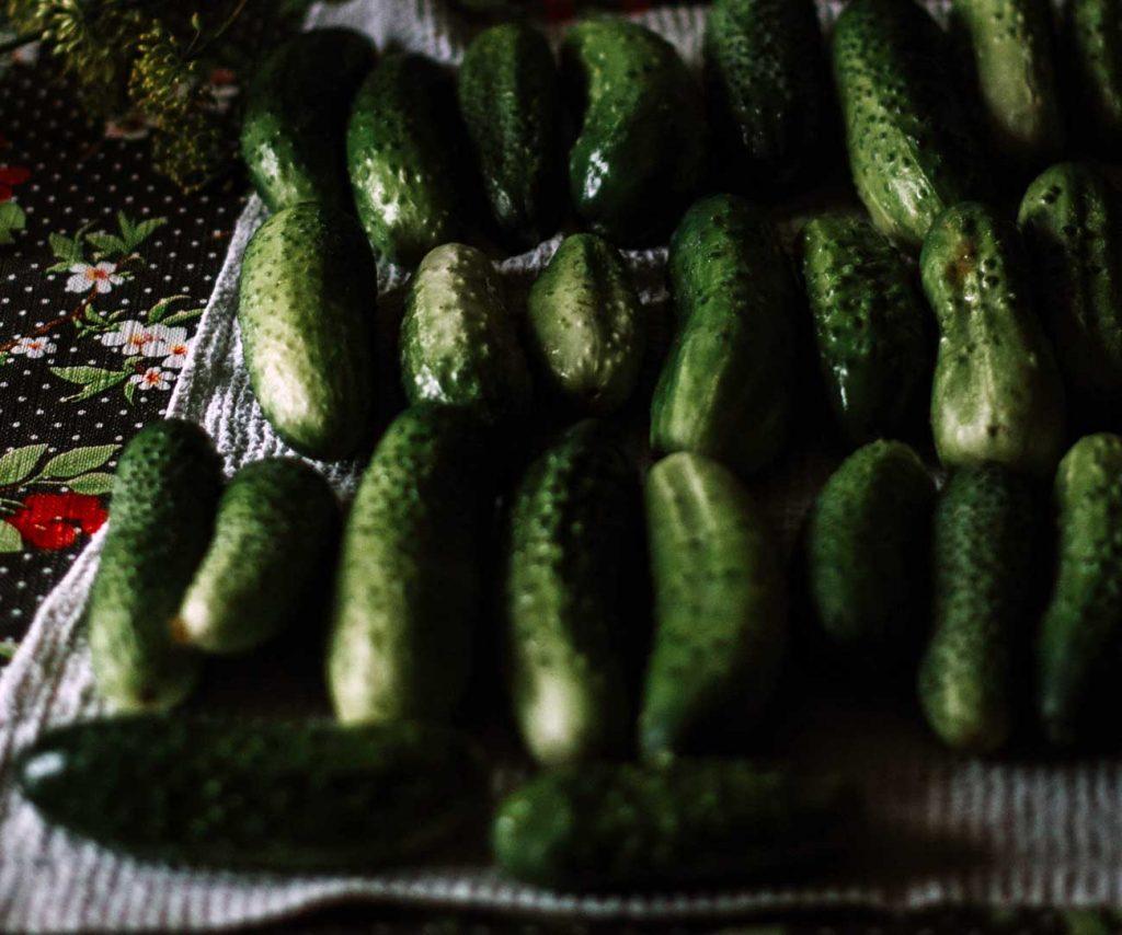 Benefícios de saúde do pepino e efeitos colaterais